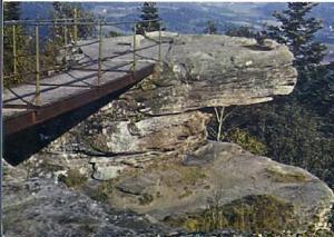 POSTAL 61120: Circuit touristique du Val de Senones