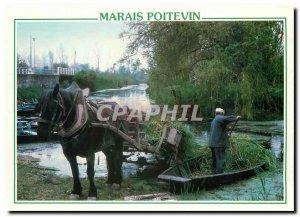 Postcard Modern Marais Poitevin Situated on both sides