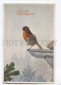 257588 NEW YEAR Charming Winter Bird by RAMMERER Vintage PC