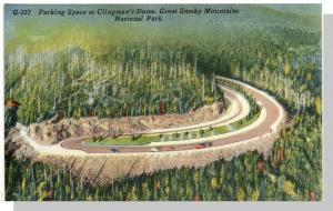 Smoky Mountains Nat'l Park,NC/TN Postcard,Clingmans,Nr Mnt!