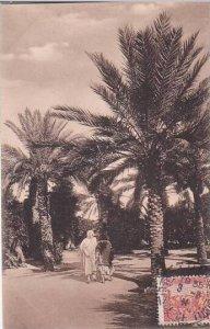 Tunisia Sous les Palmiers 1935