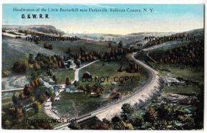Headwaters Little Beaverkill, Parksville NY