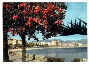 Ajaccio , France, 50-60s   Le Boulevard Lantivy et la Citadelle