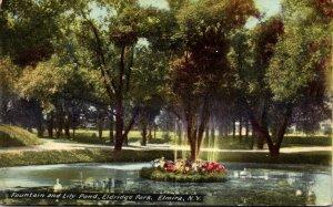 New York Elmira Eldridge Park Fountain and Lily Pond 1910