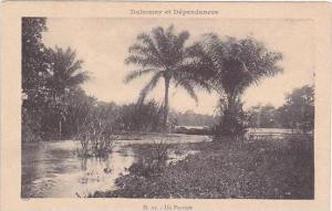 Dahomey et Dependances Un Paysage