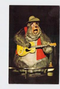 VINTAGE POSTCARD WALT DISNEY WORLD FRONTIERLAND COUNTRY BEAR JAMBOREE BIG AL #2
