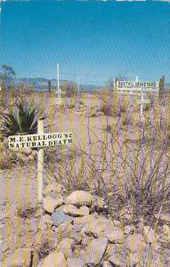 Grave of M.E.  Kellogg,  Tombstone,   Arizona,   40-60s