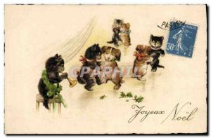 Old Postcard Cat Kitten Cats Trumpet