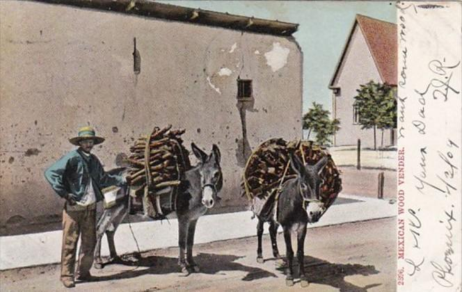 Mexico Man With Donkeys Typical Mexican Wood Carrier 1909