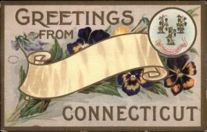 Greetings From Connecticut Embossed Floral etc c1910 Postcard