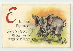 Postcard ~ E is for ELEPHANT ~ Alphabet Animals ~ Copyright 1910
