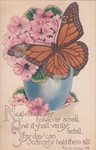 Neglect No Joy With Butterfly