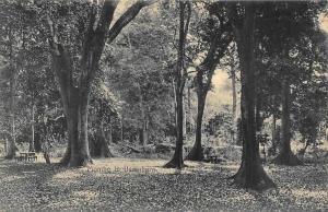 German East Africa Tanzania Mombo in Usambara, Mountains, Postcard