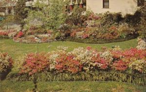 Mississippi McComb Beautiful Flower Gardens