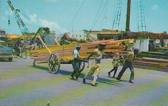 Barbados Bridgetown Transporting Lumber By Hand Cart