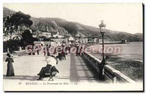 Old Postcard Menton Promenade du Midi