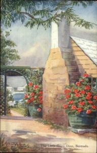 Bermuda - Ethel & CF Tucker View Postcard/Card - The Little Green Door