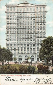 Whitehall Building, Manhattan, New York City, N.Y., Early Postcard, Used in 1906