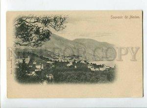 3133106 FRANCE Souvenir de MENTON Vintage postcard