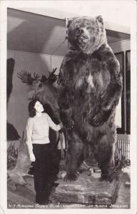 Alaskan Brown Bear University Of Alaska Museum Alaska Real Photo