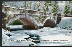 TN Winter Time Native Stone Bridges Newfound Gap Highway Great Smoky Mountain