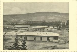 israel palestine, BEIT ZERA בֵּית זֶרַע, Kibbutz (1930s) Tmunia Postcard 186