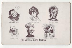 P425 JL old private mailing postcard the whole dam house