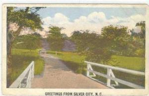 Greetings from Silver City, North Carolina, 1910s