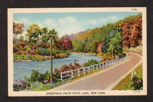 NY Greetings From White Lake New York Linen Postcard PC Carte Postale