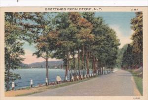 New York Greetings From Otego Curteich