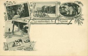 egypt, CAIRO, Nile Hotel, Gezira, Bulaq, Camels (1899) Postcard