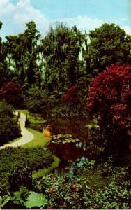 Florida Cypress Gardens Beautiful Flowers In Bloom 1973