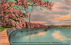 Vtg Washington Monument and Cherry Blossoms at Sunset Washington DC Postcard