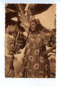 142838 Guinea KINDIA banana plantation type Vintage postcard