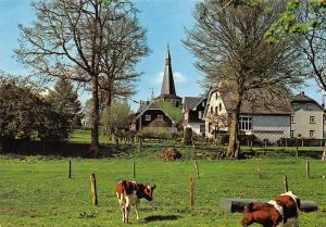 Belgium Amel Cattles Partial view Houses Maisons