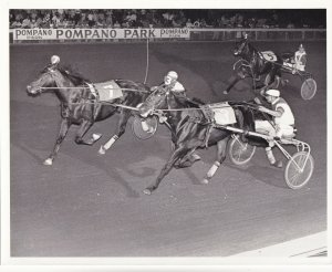 POMPANO PARK, Harness Horse Race , MAPLE LEAF LYNN winner