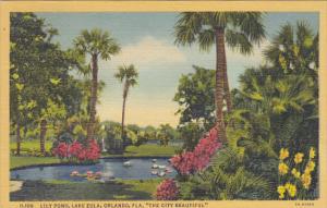 Lily Pond Lake Eola Orlando Florida Curteich