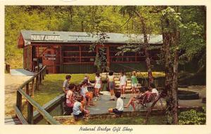 Natural Bridge Alabama~Families in Front of Souvenir Gift Shop~1960s Postcard
