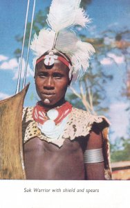 Suk Warrior With Shield & Spears Old African Rhodesia Postcard