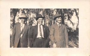 Three Men, Obviously Brothers~Pin-Striped Suit~Diagonal Tie~Hat Band~RPPC c1910