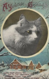 CHRISTMAS, 1900-10s; Yuletide Greeting, Profile of Cat, Poem