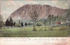 Connecticut New Haven West Rock Park 1906