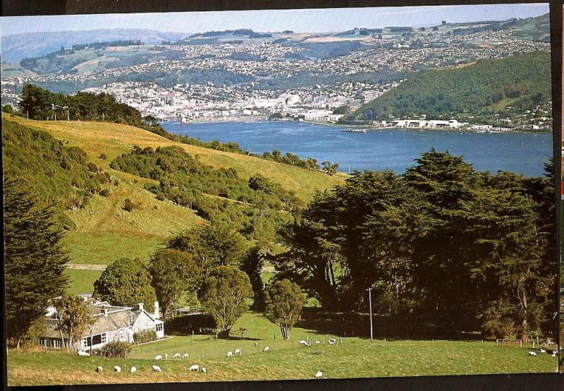 NEW ZEALAND POSTCARD DUNEDIN CITY AND HARBOUR FROM OTAGO PEN