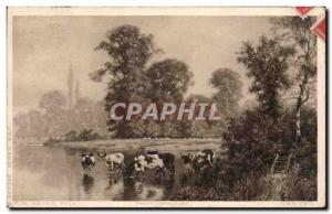 Old Postcard Fancy Cows Hayes