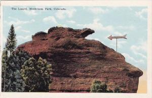 Colorado Mushroom Park The Lizard