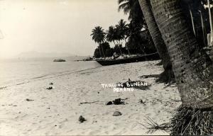 malay malaysia, PENANG, Tangong Bungah, Beach Scene, Palm Trees (1930s) RPPC