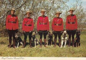 R.C.M.P. , Canada , 1950-70s ; Police Dog #4