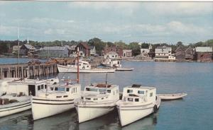 Fishing Boats in Harbour New Brunswick ,  Canada , 50-60s