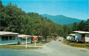 Fontana Village Resort NC~SLOW Corner Brooks & Laurel Way~1950s Cars~Postcard