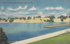 Lagoon Dunes In Background Gary Indiana